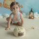cakesmash winnie de poo photography with love sabrina serraarens rotterdam