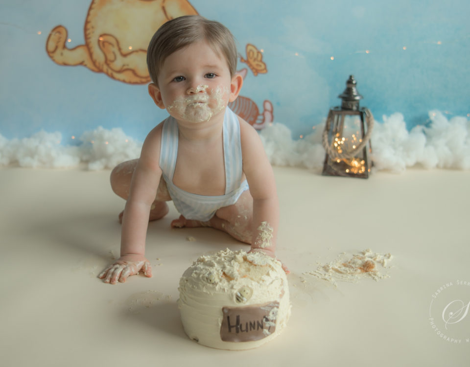 cakesmash winnie de poo photography with love sabrina serraarens rotterdam